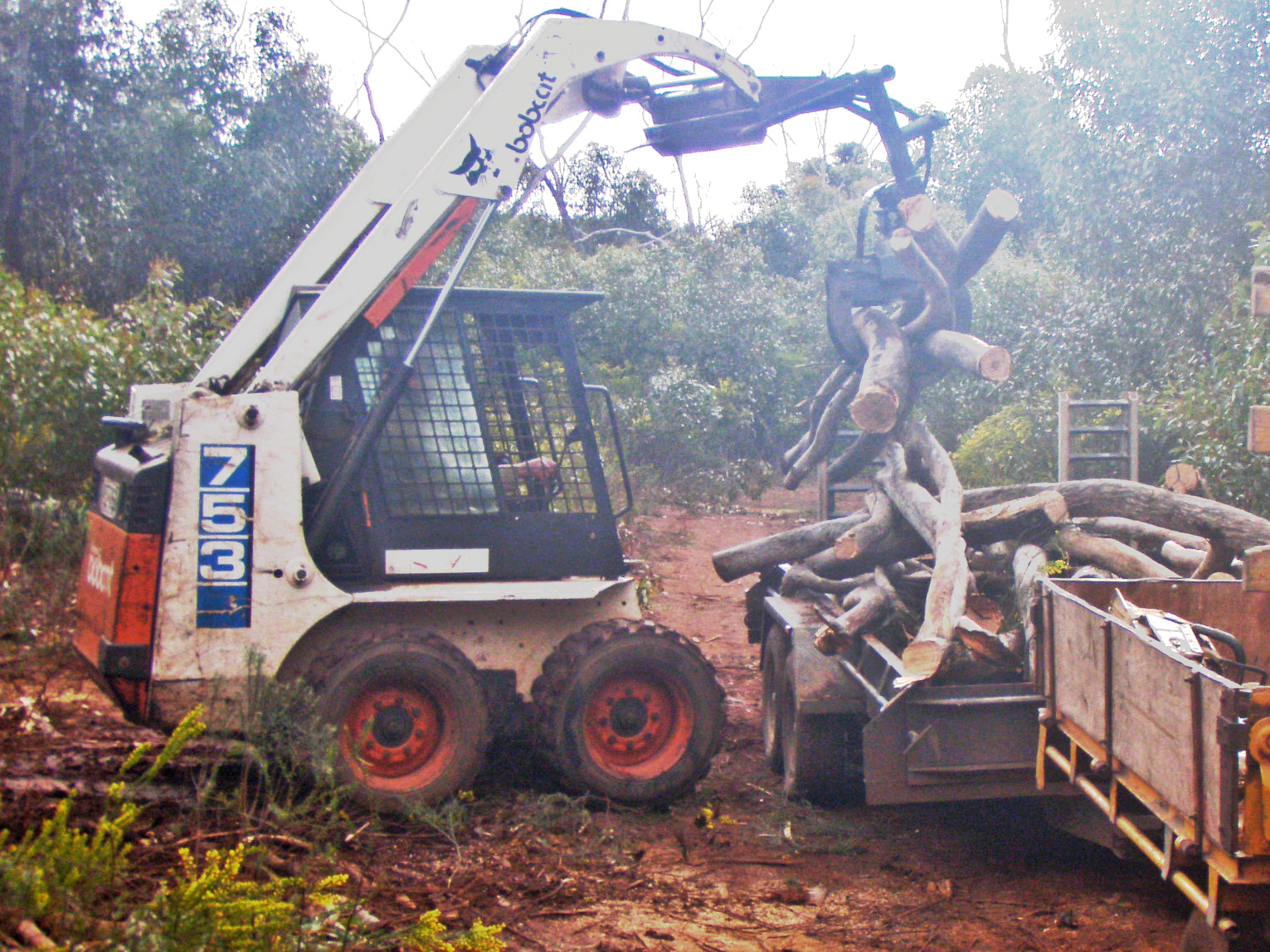 Skid Steer Grapples Skid Steer Grapple Log Skidder